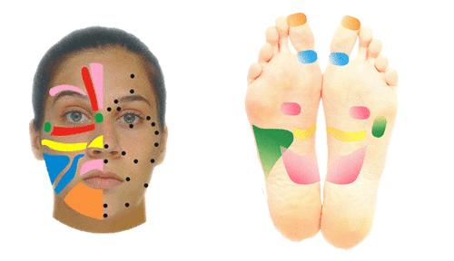 Bipolar-refleksterapi-middelfart-henriette-samsoe_II